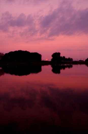 Mirrored landscape